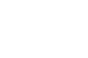 ICR Evolution